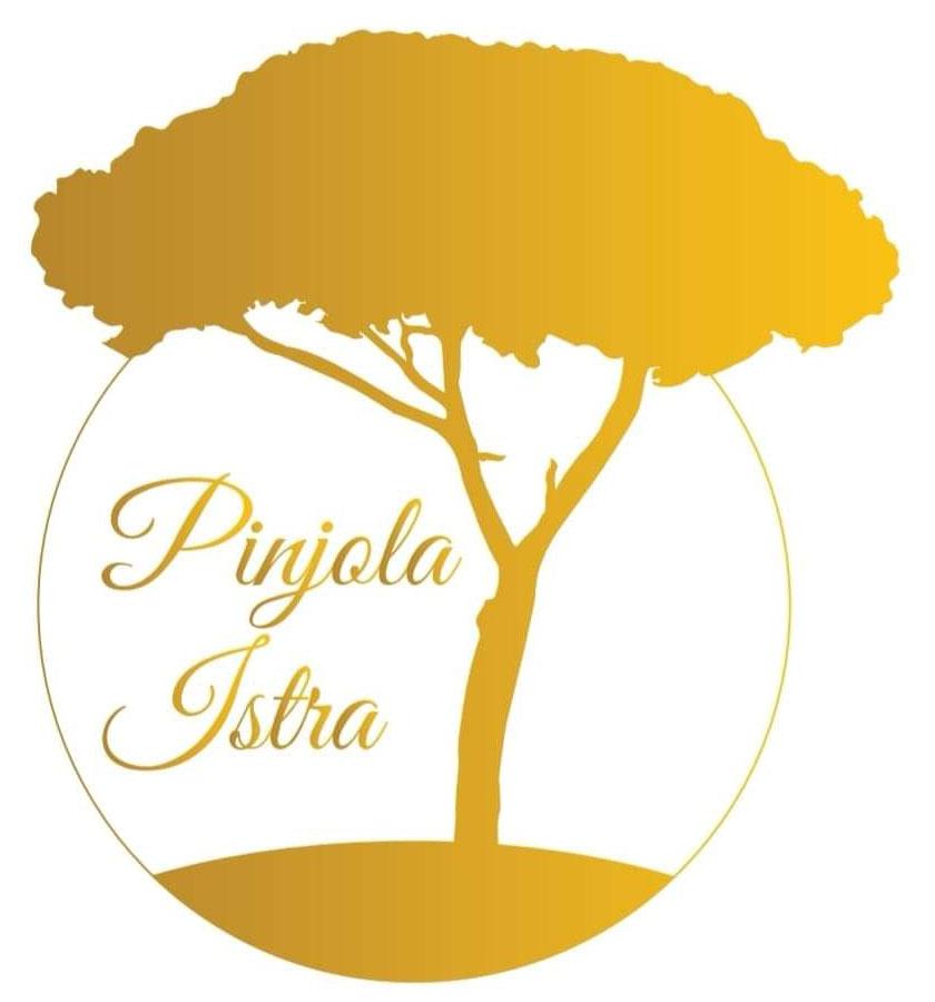logo-web-pinjola